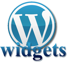 WP Lesson: What in the world is a widget?