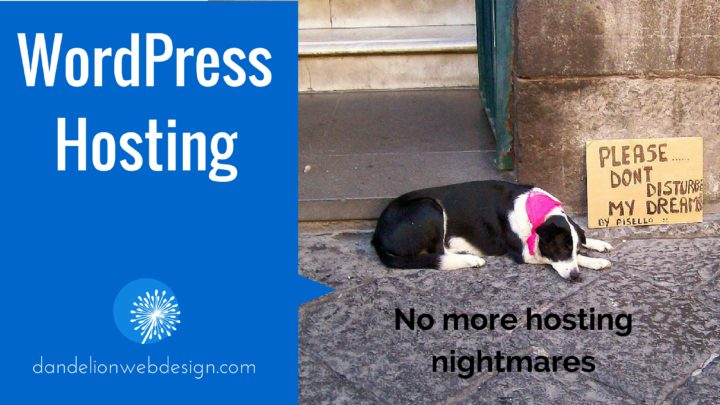 WordPress Hosting | No more hosting nightmares